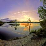 Tyresta Nationalpark Årsjön