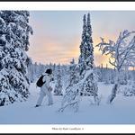 På skidor genom tajgan