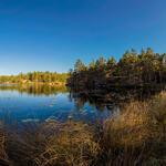Tyresta nationalpark - Årsjön i panorama